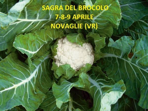Sagra del Brocolo - Novaglie @ Novaglie | Novaglie | Veneto | Italia