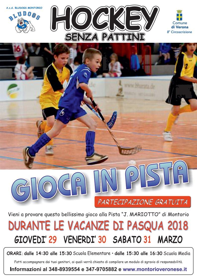 Hockey senza pattini - Bludogs @ Piastra polivalente Mariotto | Montorio | Veneto | Italia