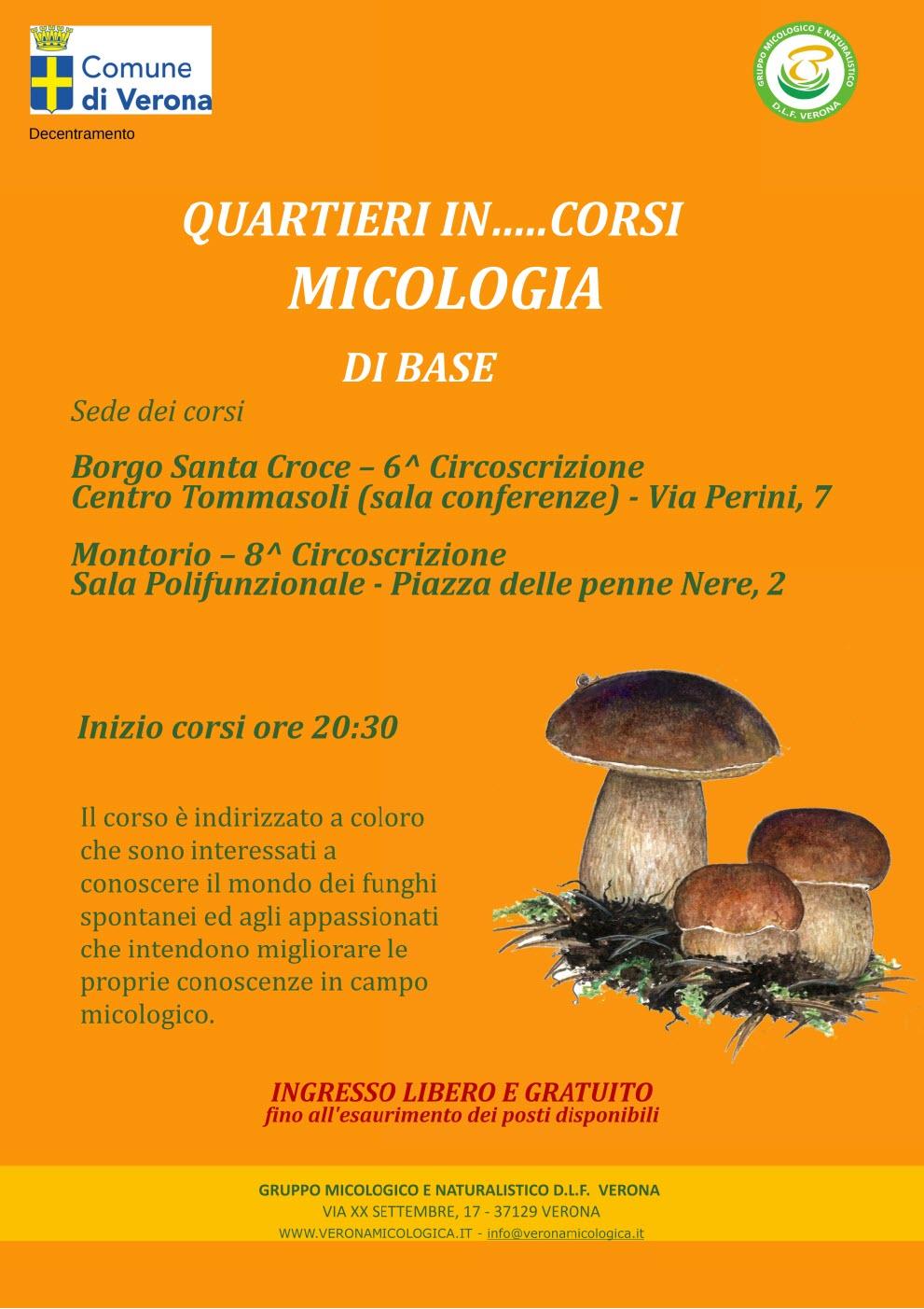 Inizio corso di Micologia di Base @ Sala Giovanni Paolo II - Montorio | Montorio | Veneto | Italia